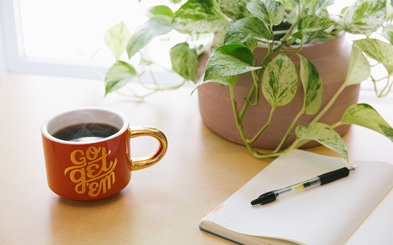 Houseplant, notebook, and coffee mug